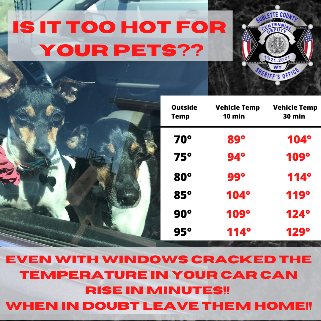 SCSO reminds citizens to never leave dogs and or childen unattended in a hot vehicle!