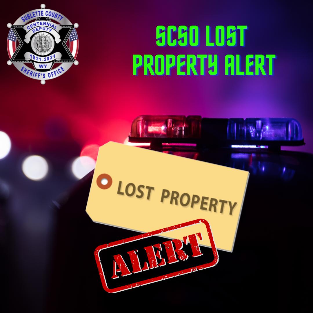 SCSO seeks public assistance in finding lost firearms